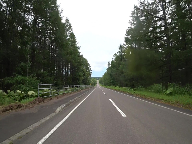 北19号道路