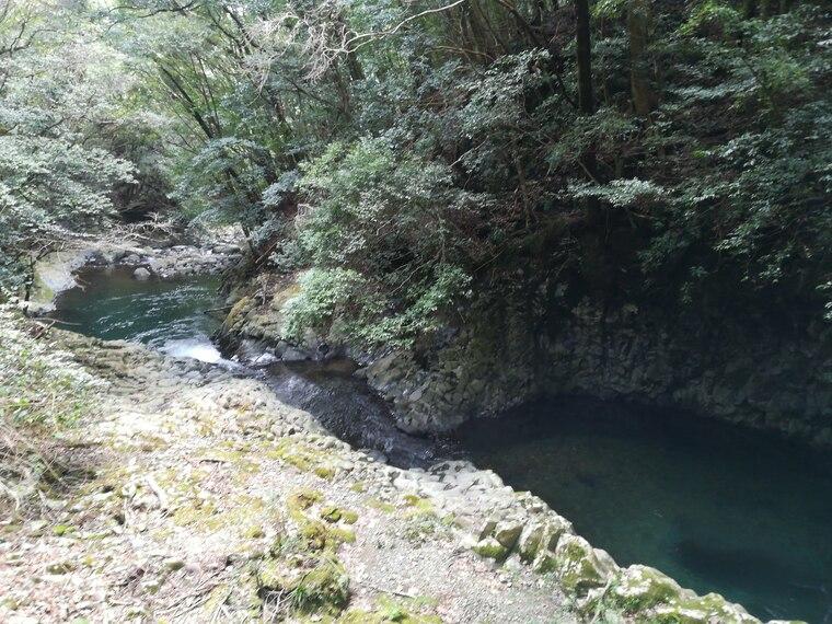 河津七滝ではないですが、猿田淵にも行きました 河津七滝の最も上流にある釜滝よりもさらに上流にあります。