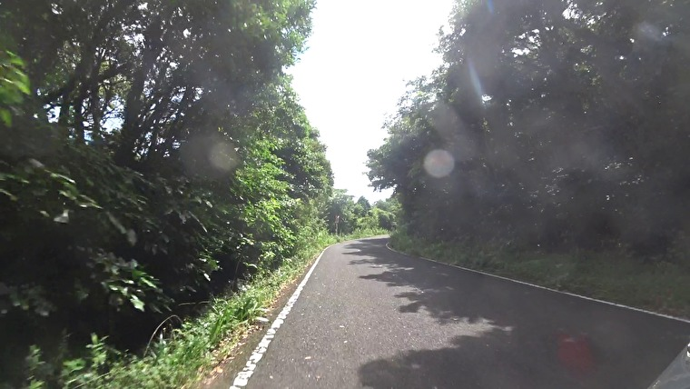 平戸大橋から島の内側を走っていきます 木々に囲まれた道を通っていき