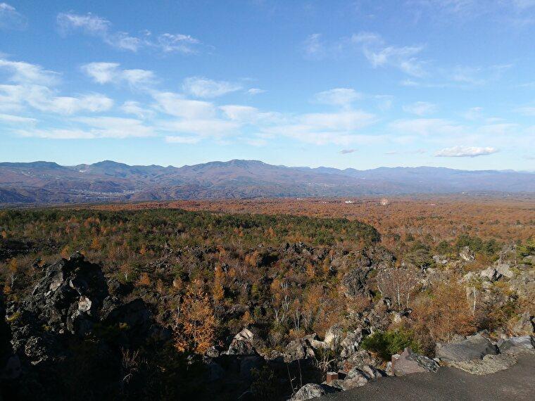 高台からの山景色も綺麗です